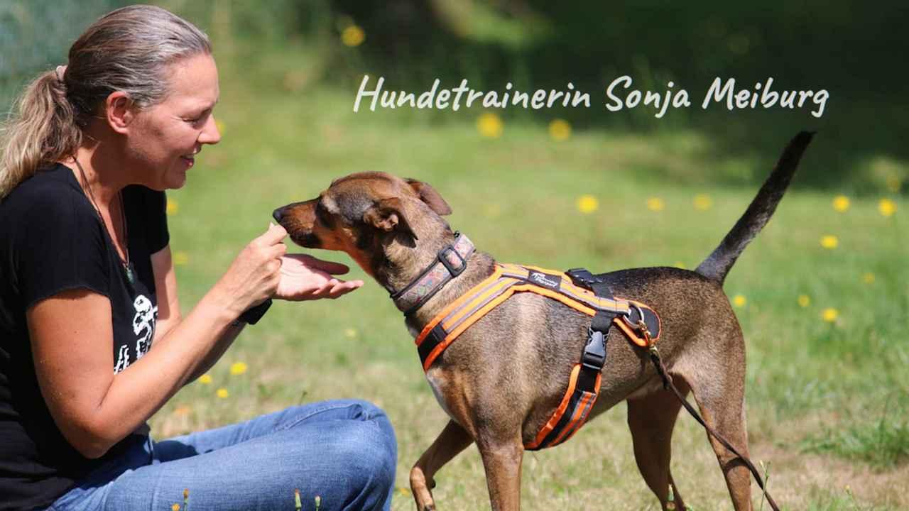 Hundetrainerin Sonja Meigurg