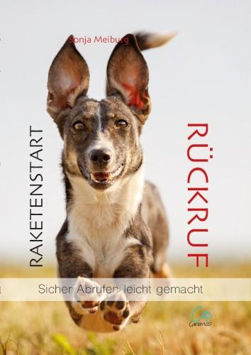 Buchcover Raktenstart Rückruf, Sonja Meiburg